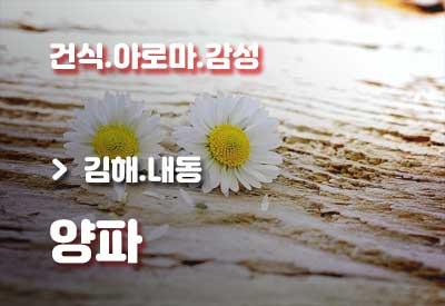 김해-건마-양파.jpg