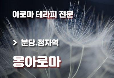 분당-마사지-몽아로마.jpg