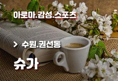 수원권선동-건마-슈가.jpg