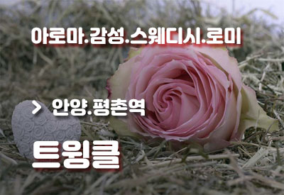 안양평촌역-건마-트윙클.jpg