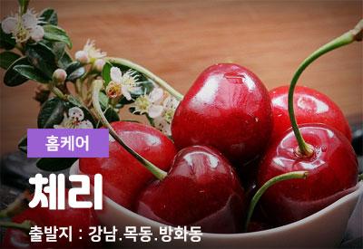 강남-출장마사지-체리.jpg