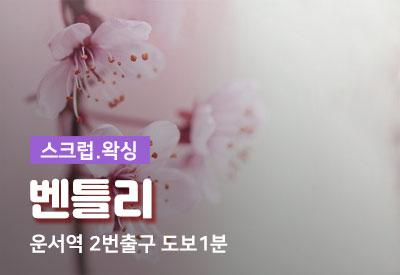 인천-1인샵-벤틀리.jpg