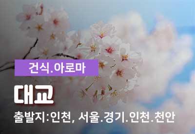 인천-출장마사지-대교.jpg